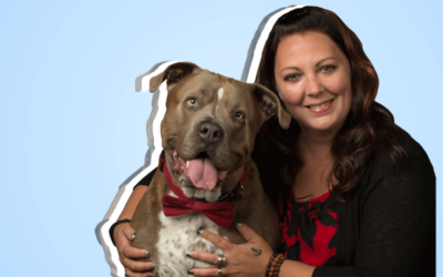 Changing Pet Training – For Good.